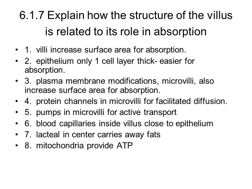 6.1.7 Explain how the structure of the villus is related to its role in absorption