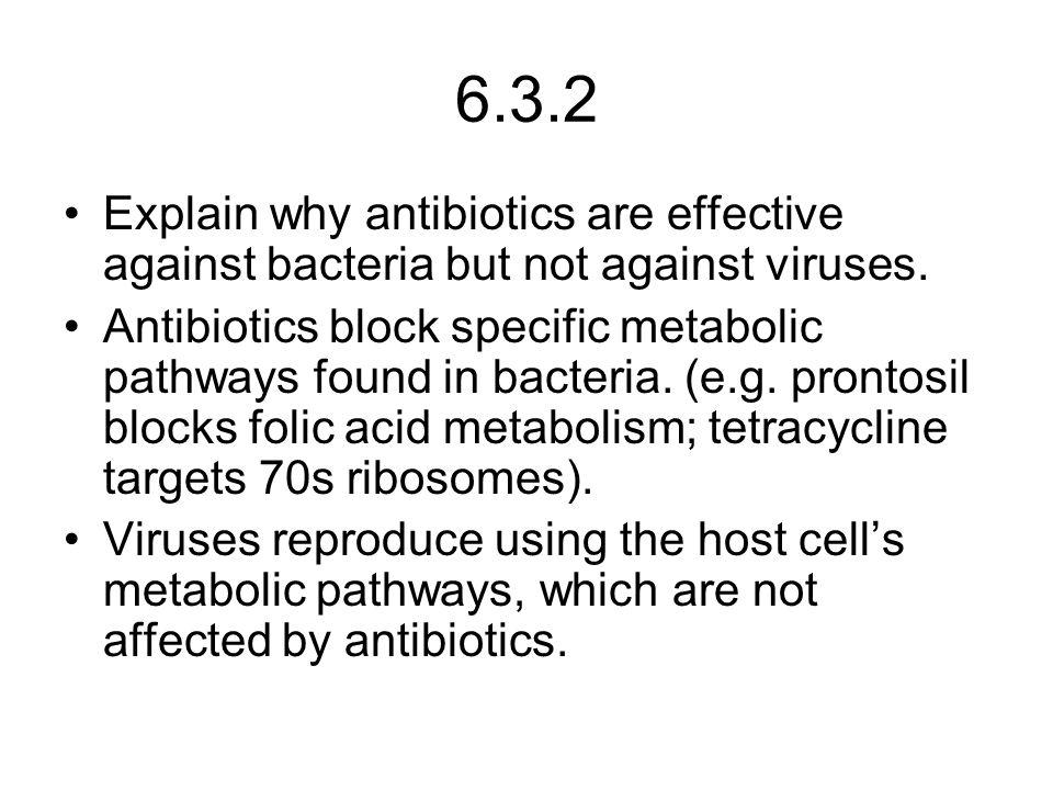6.3.2 Explain why antibiotics are effective against bacteria but not against viruses.