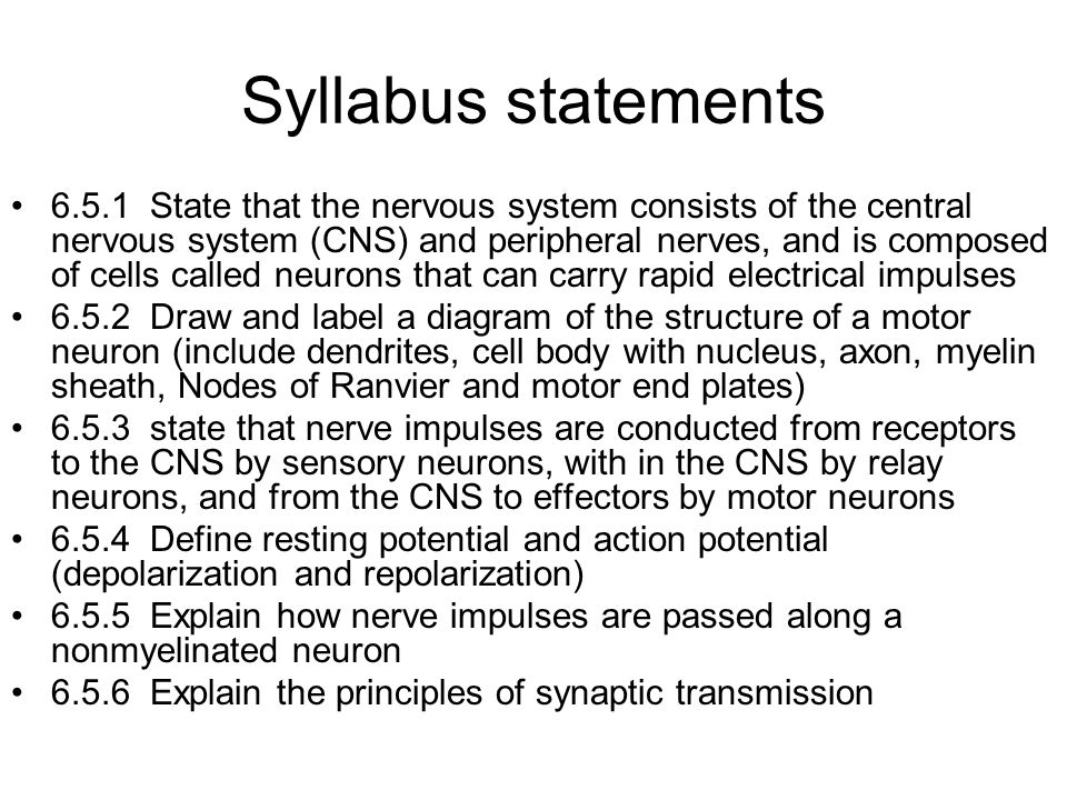 Syllabus statements