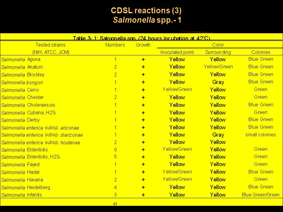 CDSL reactions (3) Salmonella spp.- 1