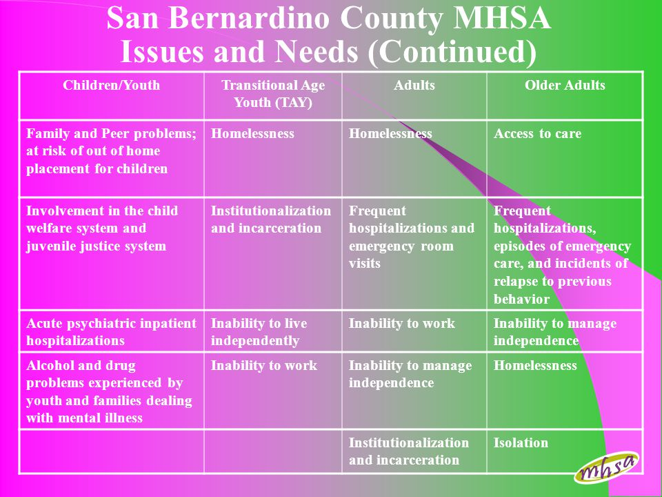San Bernardino County MHSA Issues and Needs (Continued)