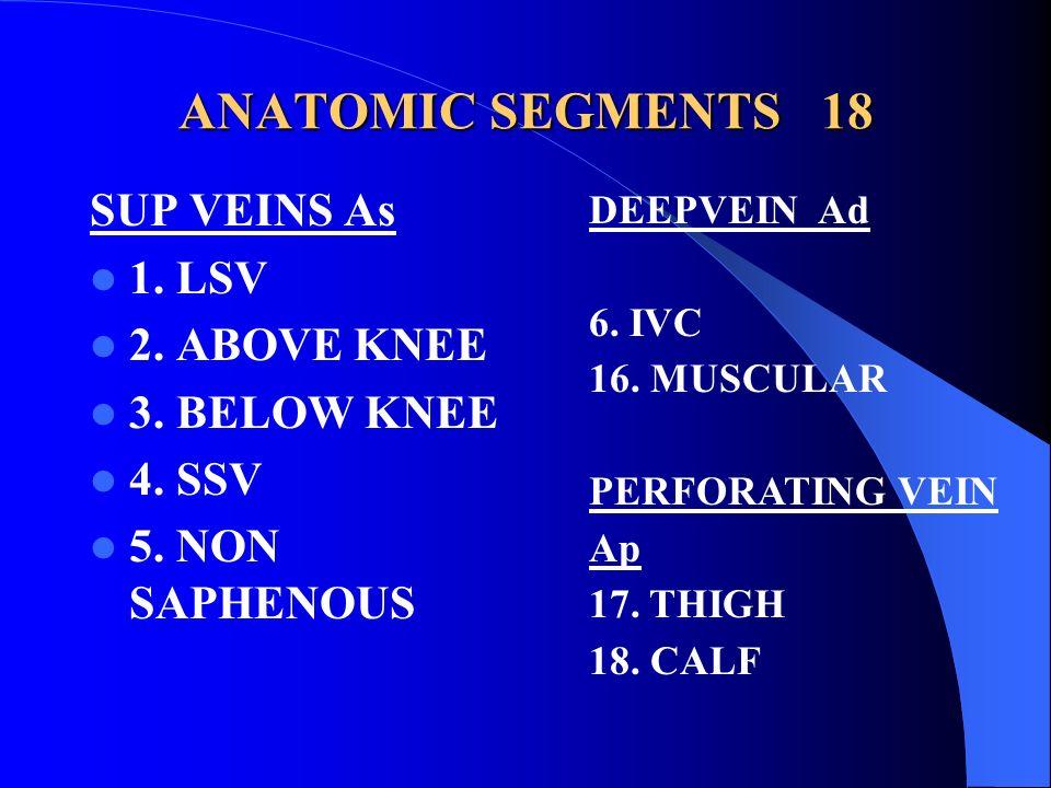 ANATOMIC SEGMENTS 18 SUP VEINS As 1. LSV 2. ABOVE KNEE 3. BELOW KNEE