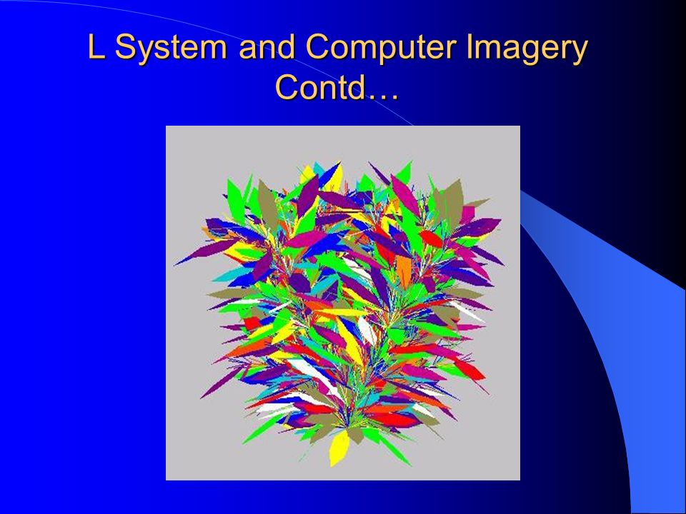 L System and Computer Imagery Contd…