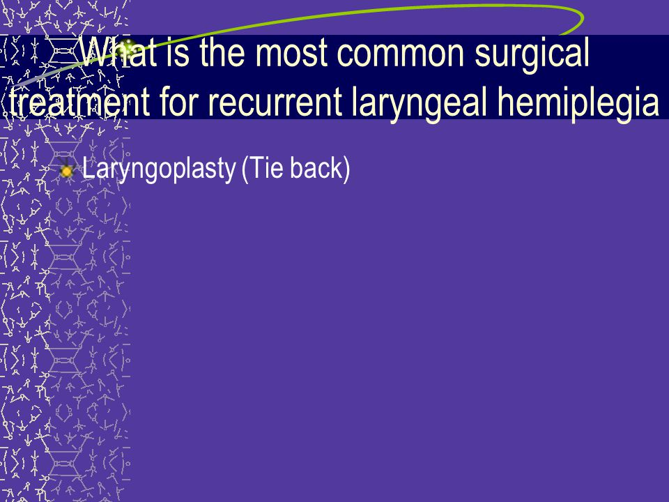 What is the most common surgical treatment for recurrent laryngeal hemiplegia
