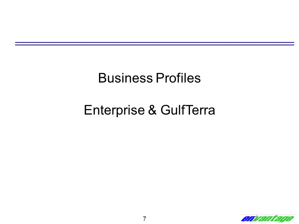 Business Profiles Enterprise & GulfTerra