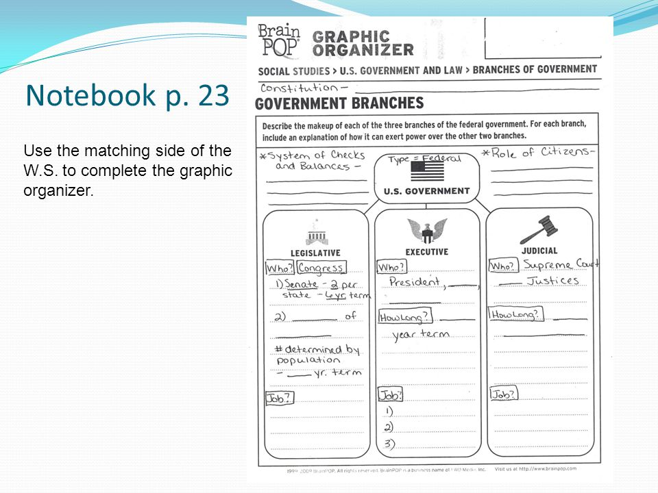 Notebook p. 23 Use the matching side of the W.S. to complete the graphic organizer.