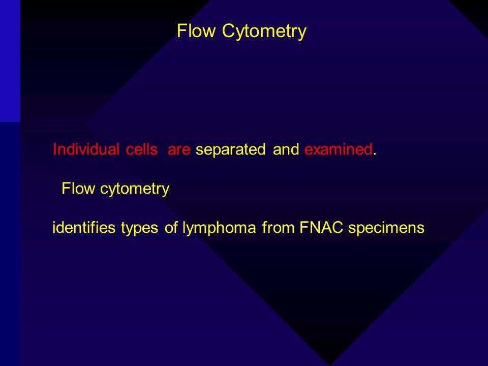 Flow Cytometry Flow cytometry