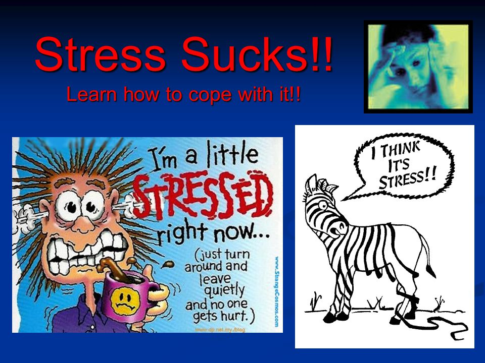 Stress Sucks!! Learn how to cope with it!!