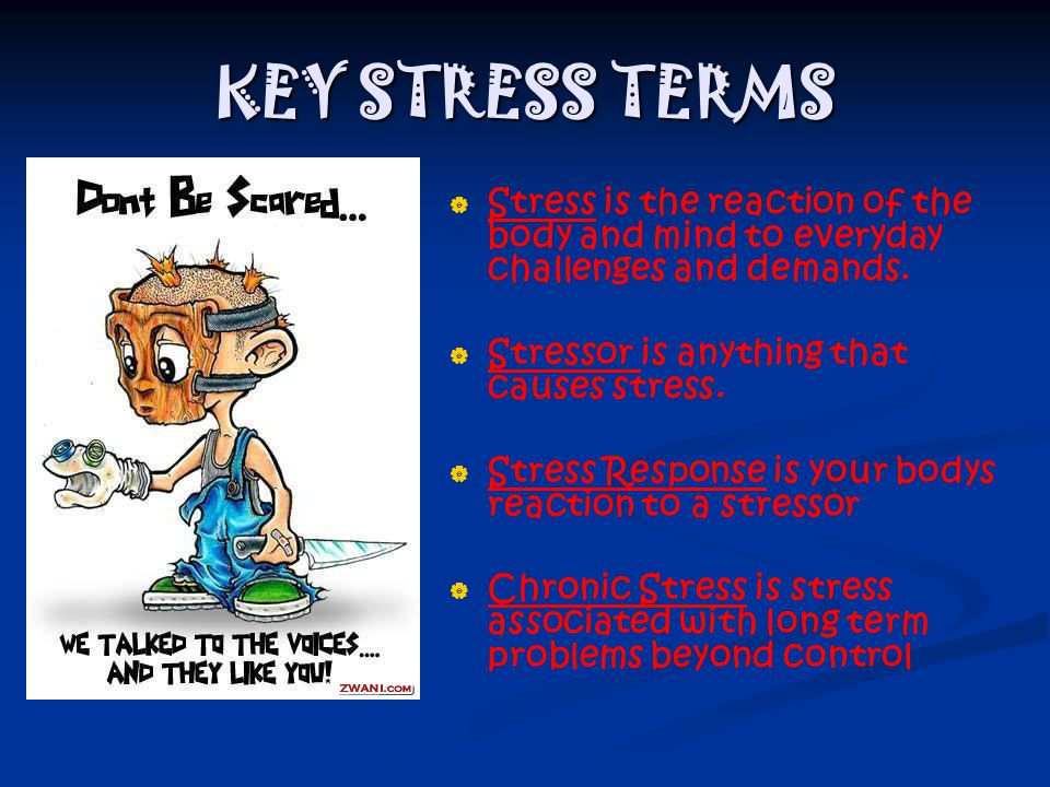 KEY STRESS TERMS Stress is the reaction of the body and mind to everyday challenges and demands. Stressor is anything that causes stress.