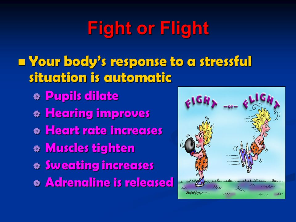 Fight or Flight Your body's response to a stressful situation is automatic. Pupils dilate. Hearing improves.
