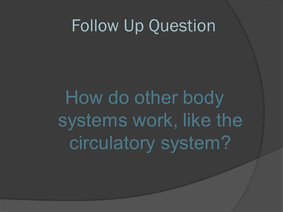 How do other body systems work, like the circulatory system
