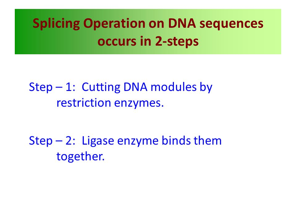 Splicing Operation on DNA sequences occurs in 2-steps