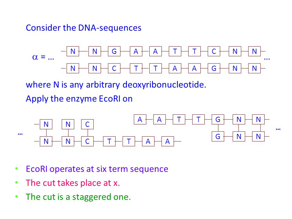 Consider the DNA-sequences