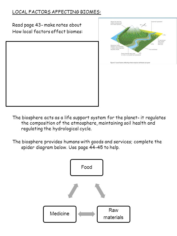 LOCAL FACTORS AFFECTING BIOMES: Read page 43- make notes about How local factors affect biomes: The biosphere acts as a life support system for the planet- it regulates the composition of the atmosphere, maintaining soil health and regulating the hydrological cycle. The biosphere provides humans with goods and services; complete the spider diagram below. Use page 44-45 to help.