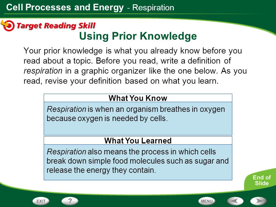 Using Prior Knowledge - Respiration