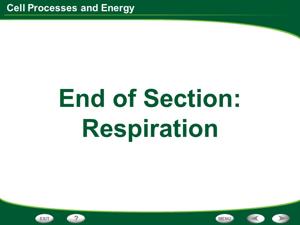 End of Section: Respiration