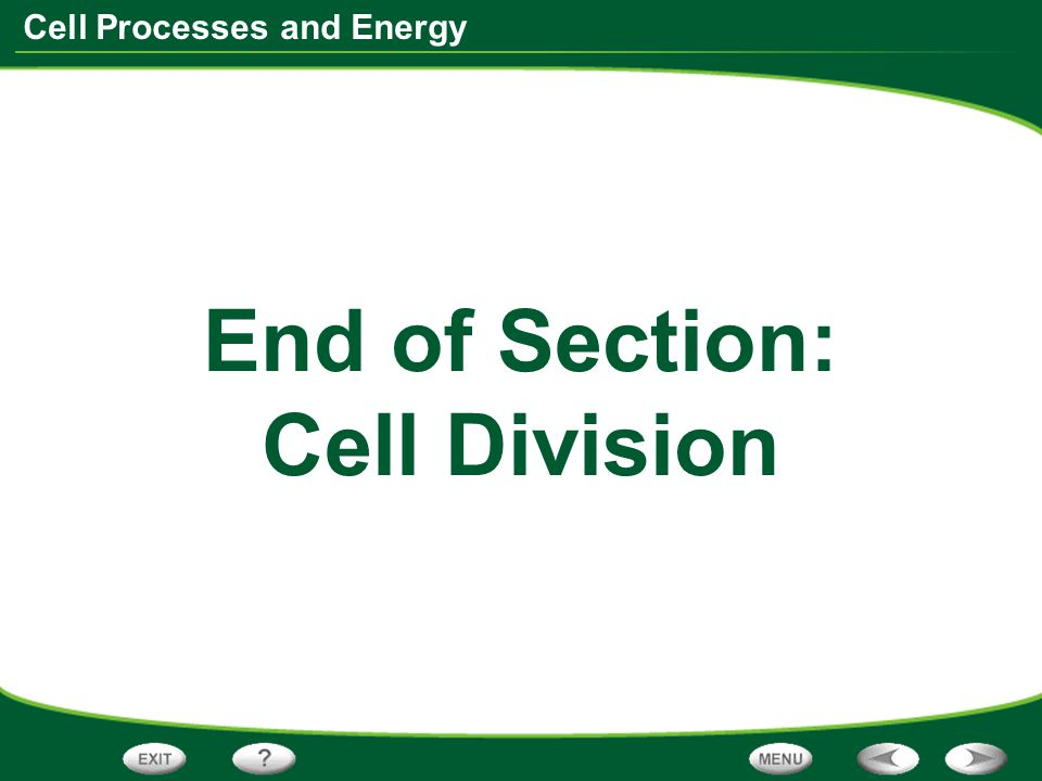 End of Section: Cell Division