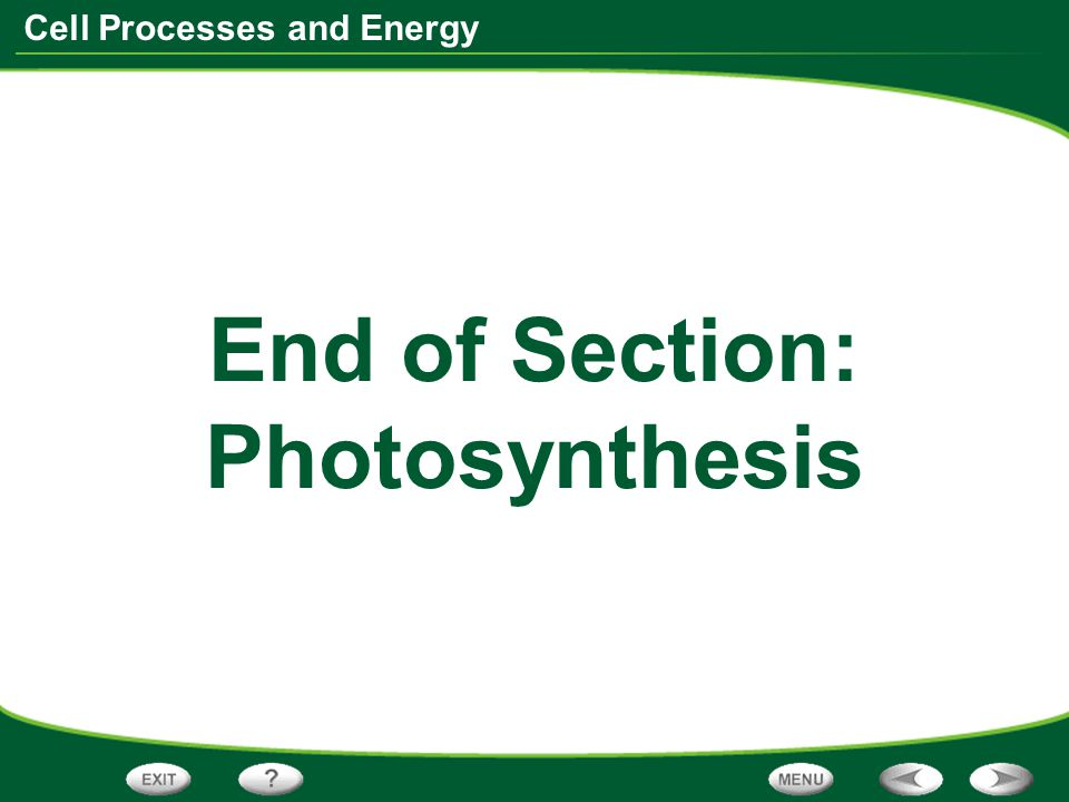 End of Section: Photosynthesis