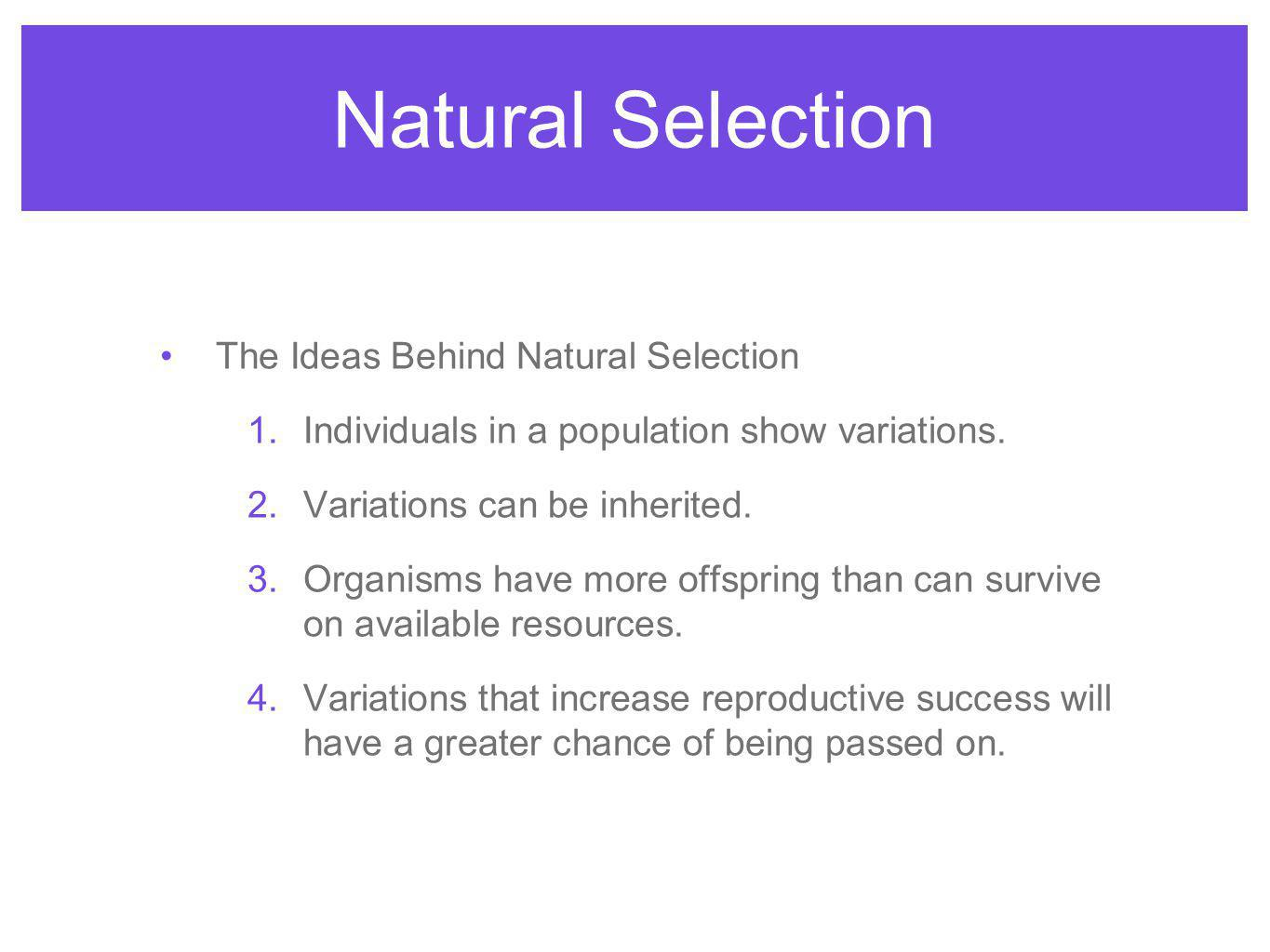 Natural Selection The Ideas Behind Natural Selection