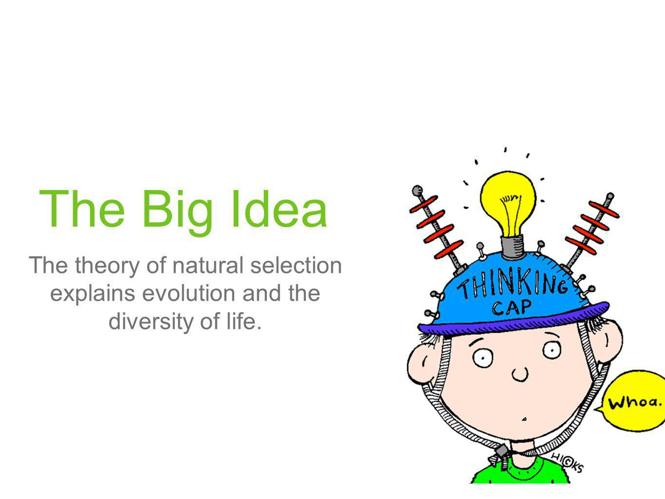The Big Idea The theory of natural selection explains evolution and the diversity of life.