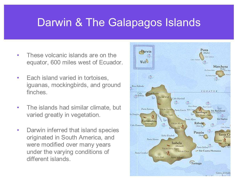 Darwin & The Galapagos Islands
