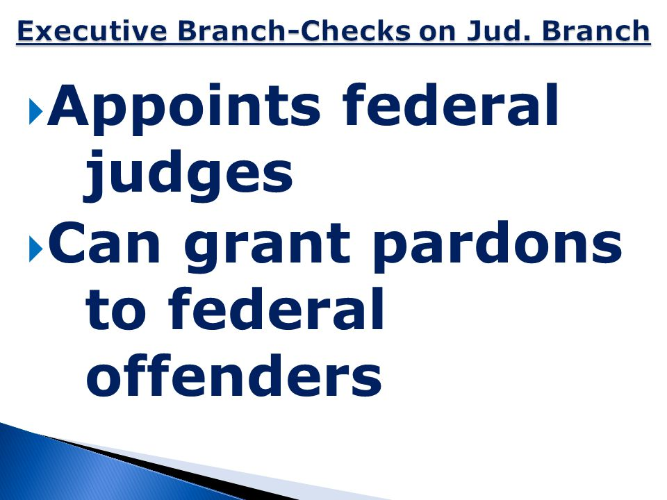 Executive Branch-Checks on Jud. Branch