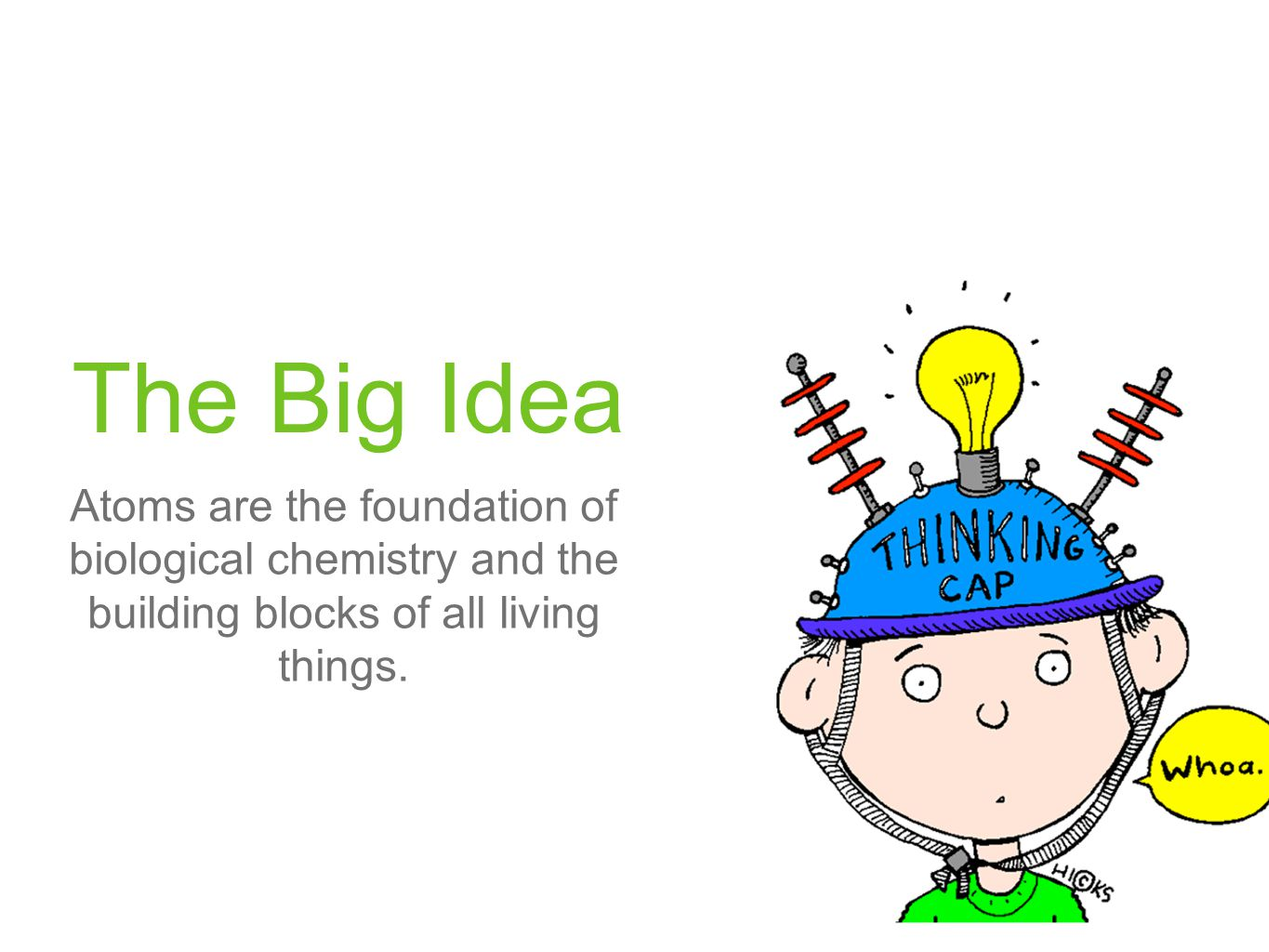 The Big Idea Atoms are the foundation of biological chemistry and the building blocks of all living things.