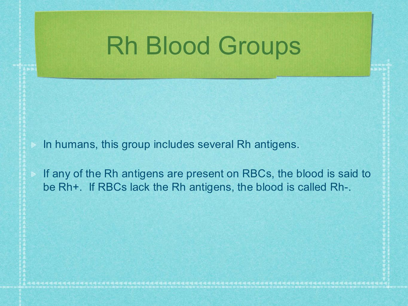 Rh Blood Groups In humans, this group includes several Rh antigens.
