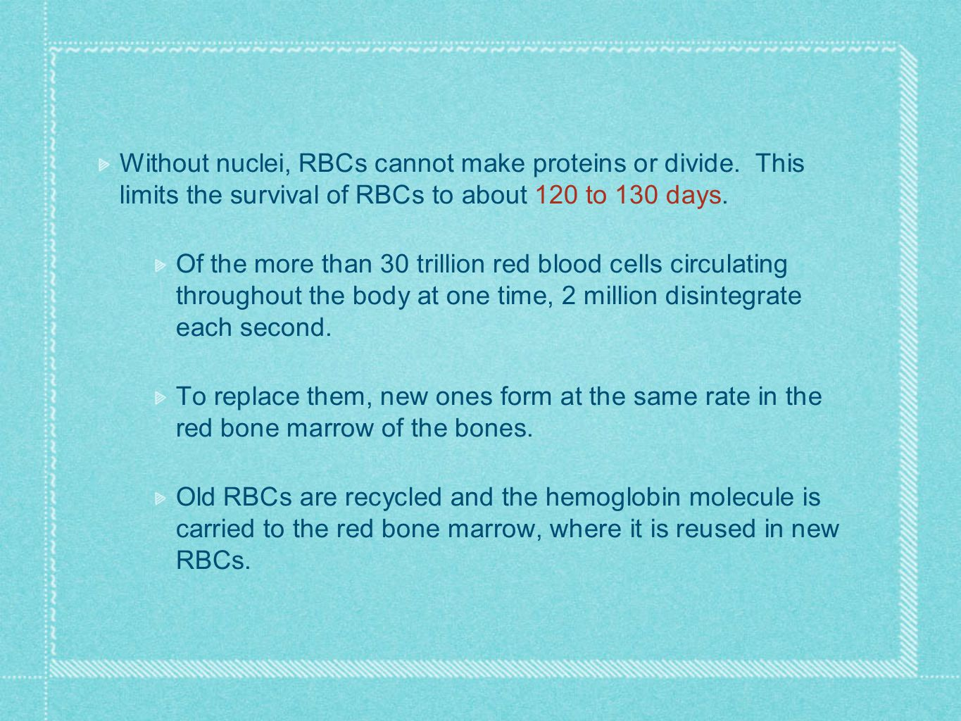 Without nuclei, RBCs cannot make proteins or divide