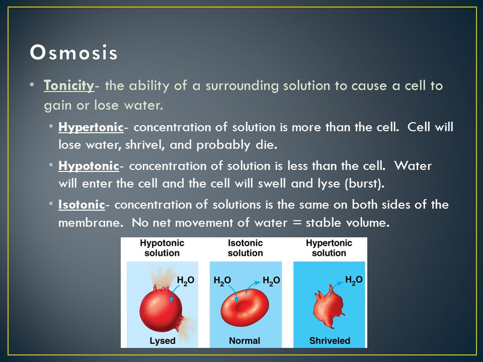 Osmosis Tonicity- the ability of a surrounding solution to cause a cell to gain or lose water.