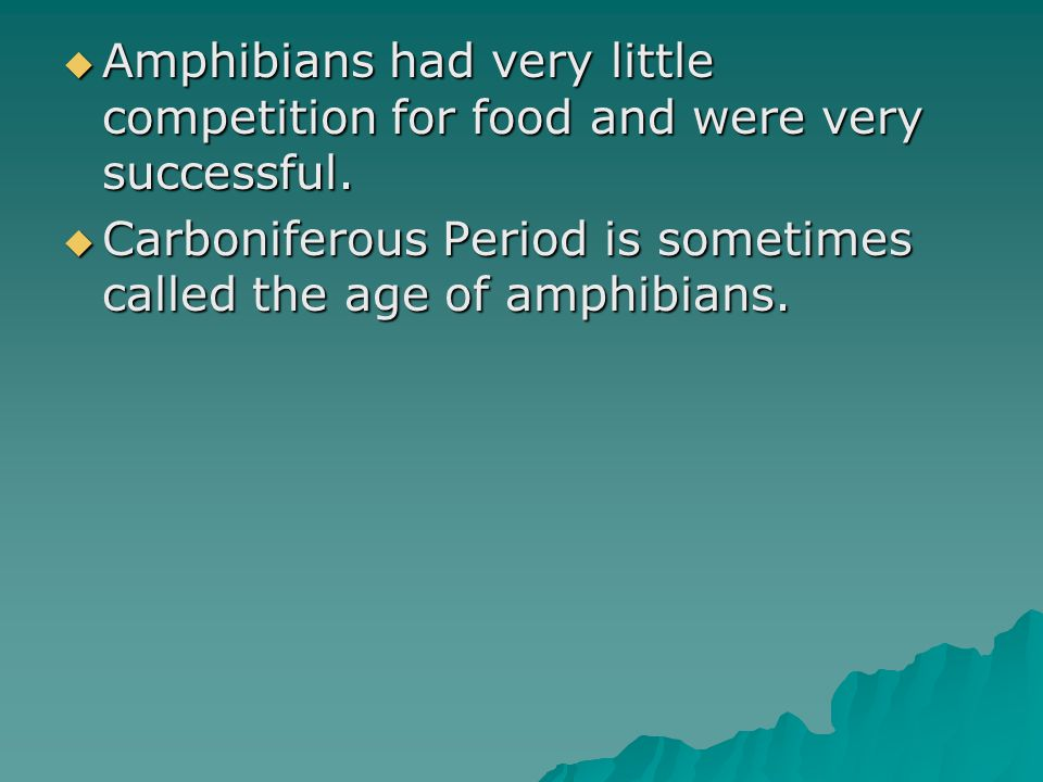 Amphibians had very little competition for food and were very successful.