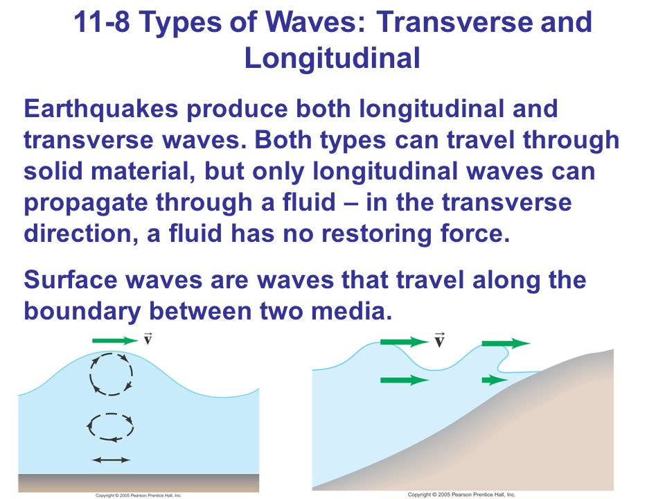 11-8 Types of Waves: Transverse and Longitudinal