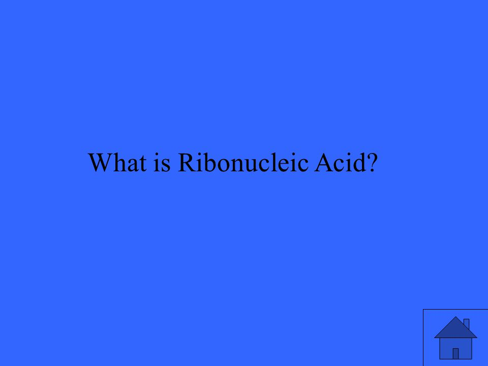 What is Ribonucleic Acid