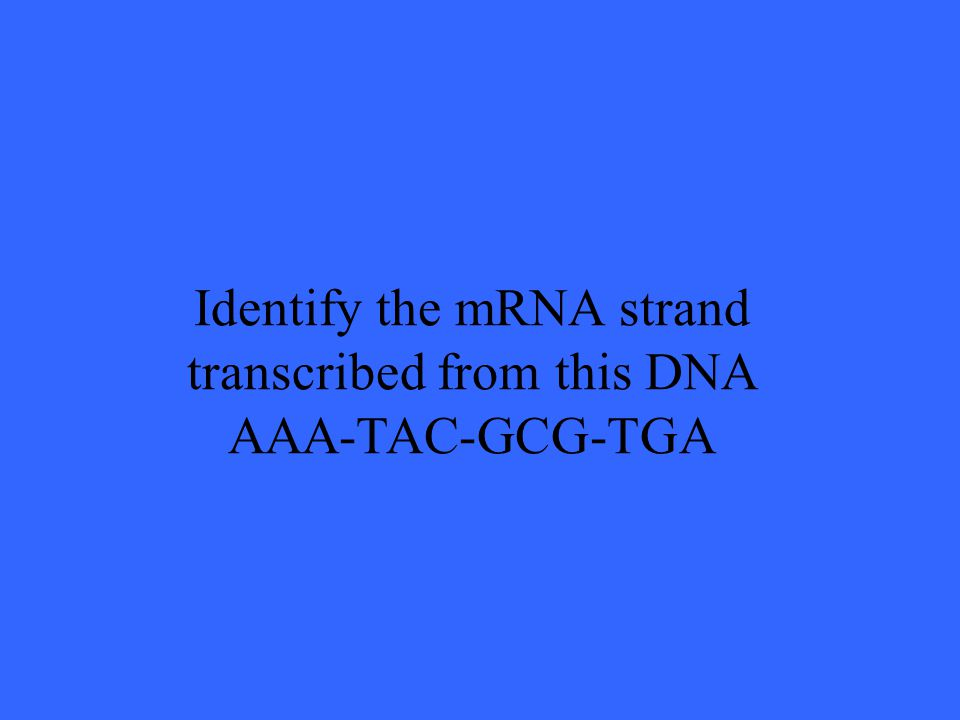 Identify the mRNA strand transcribed from this DNA