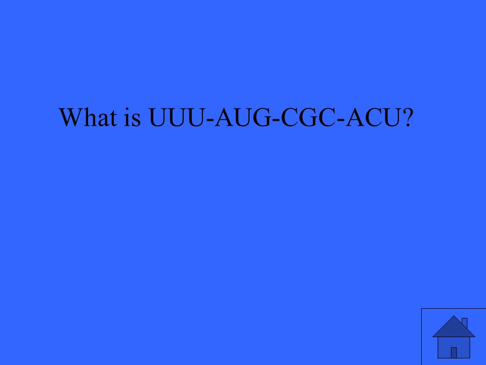 What is UUU-AUG-CGC-ACU