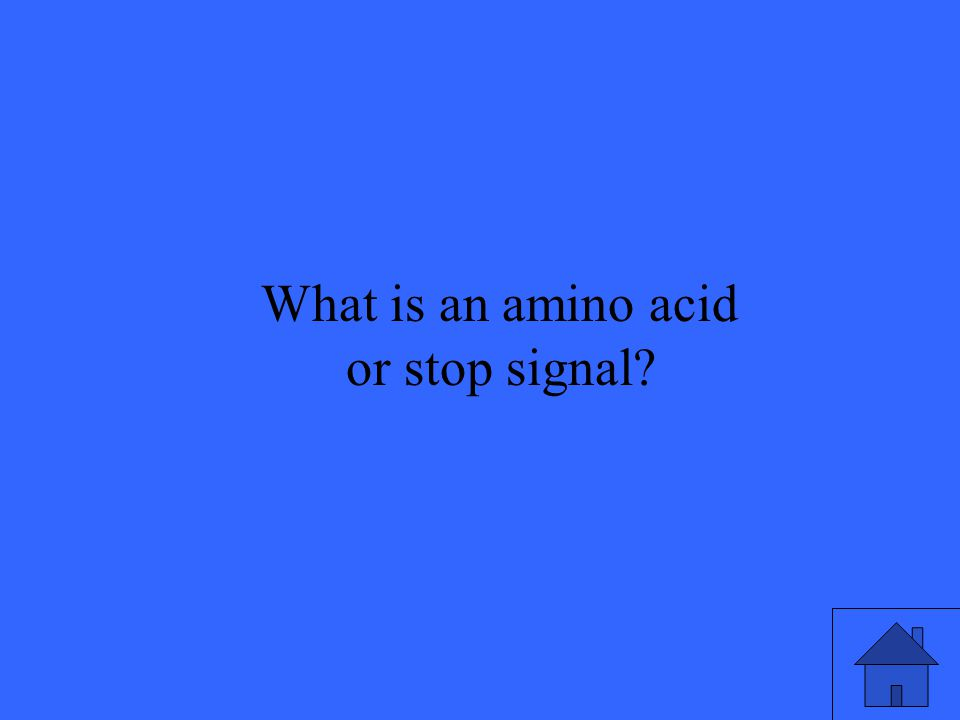 What is an amino acid or stop signal