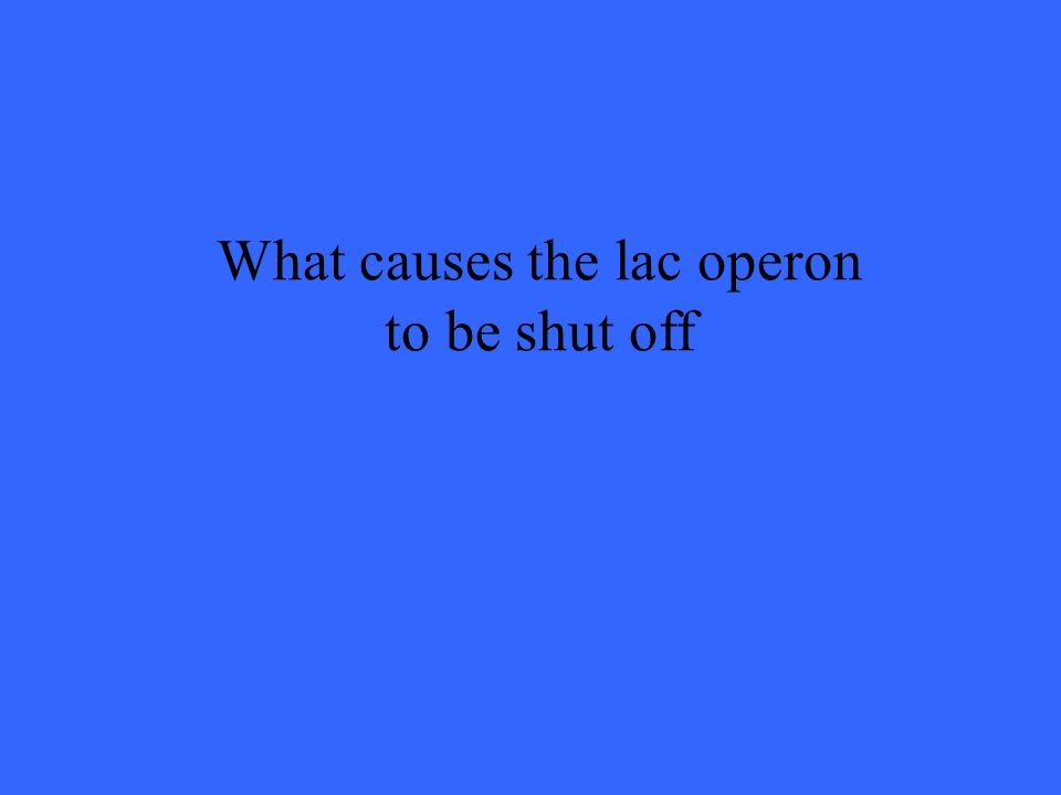What causes the lac operon to be shut off