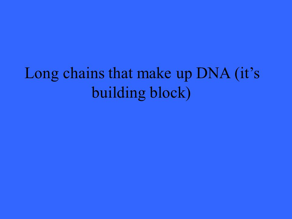Long chains that make up DNA (it's building block)