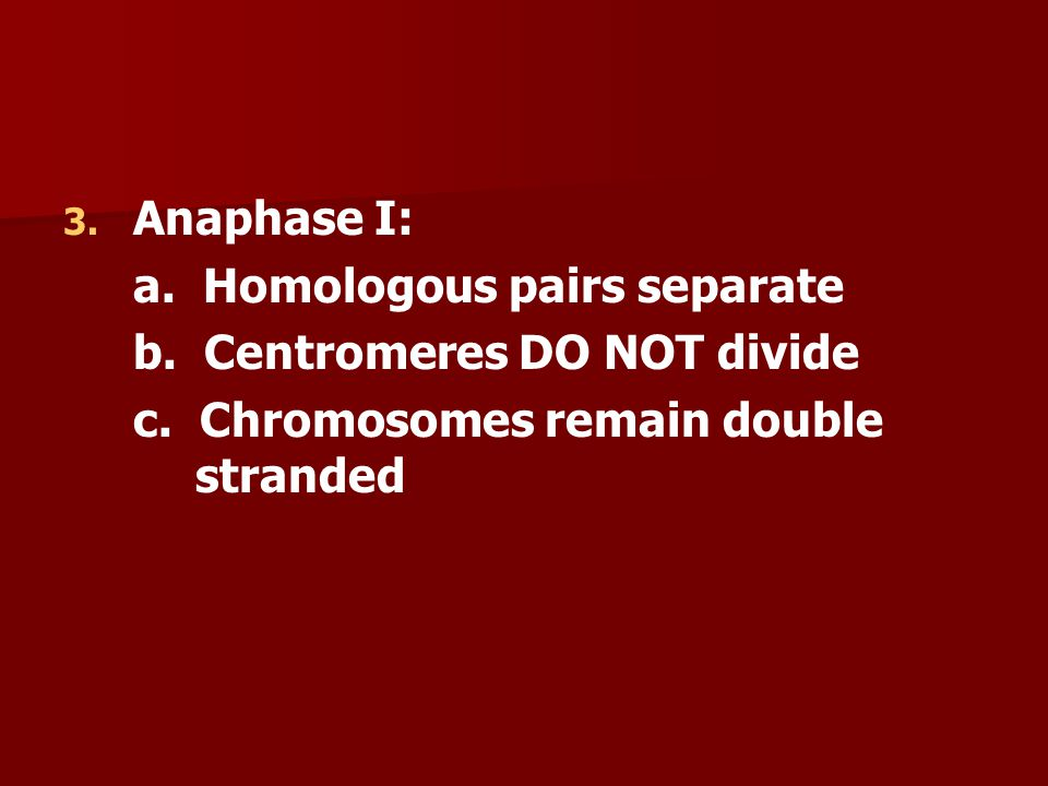Anaphase I: a. Homologous pairs separate. b. Centromeres DO NOT divide.