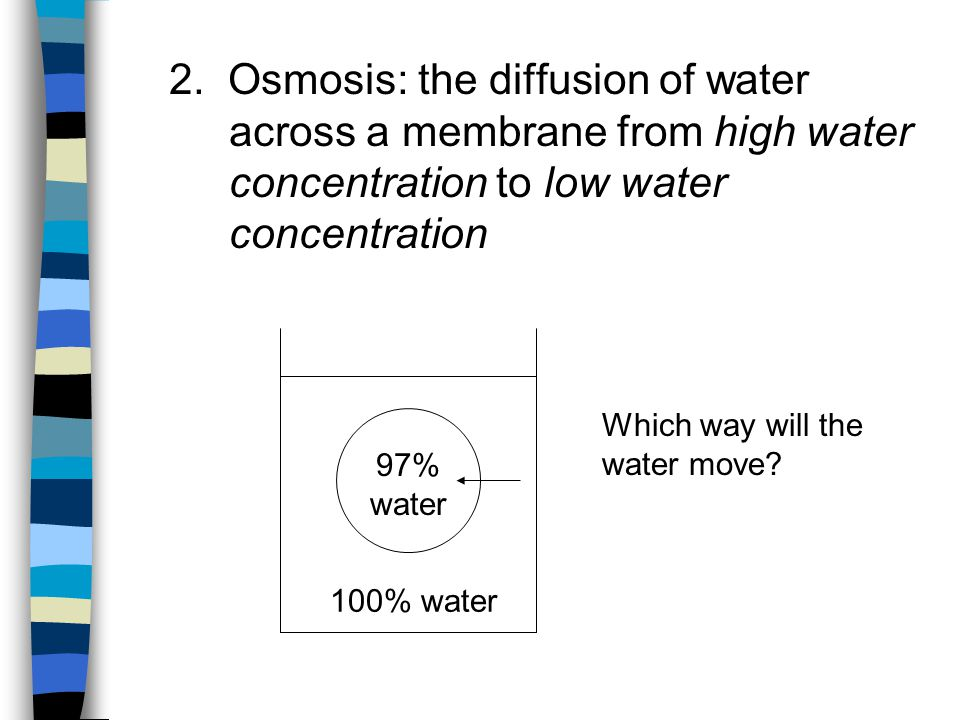 2. Osmosis: the diffusion of water. across a membrane from high water
