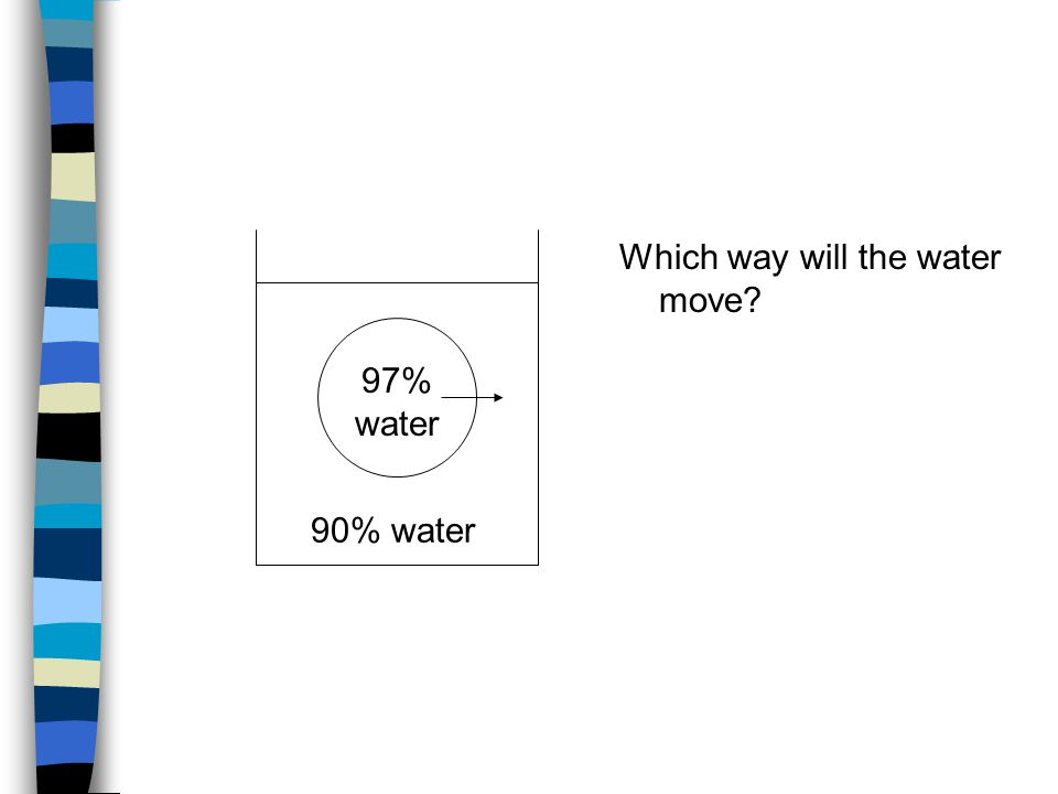 97% water 90% water Which way will the water move