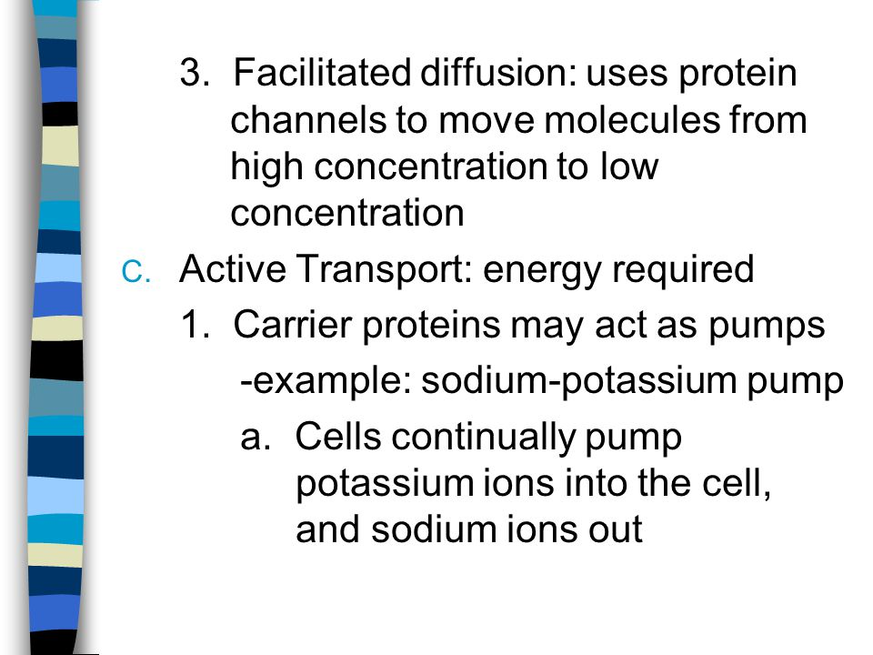 3. Facilitated diffusion: uses protein channels to move molecules from high concentration to low concentration
