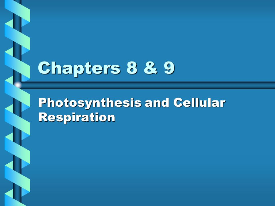 Photosynthesis and Cellular Respiration
