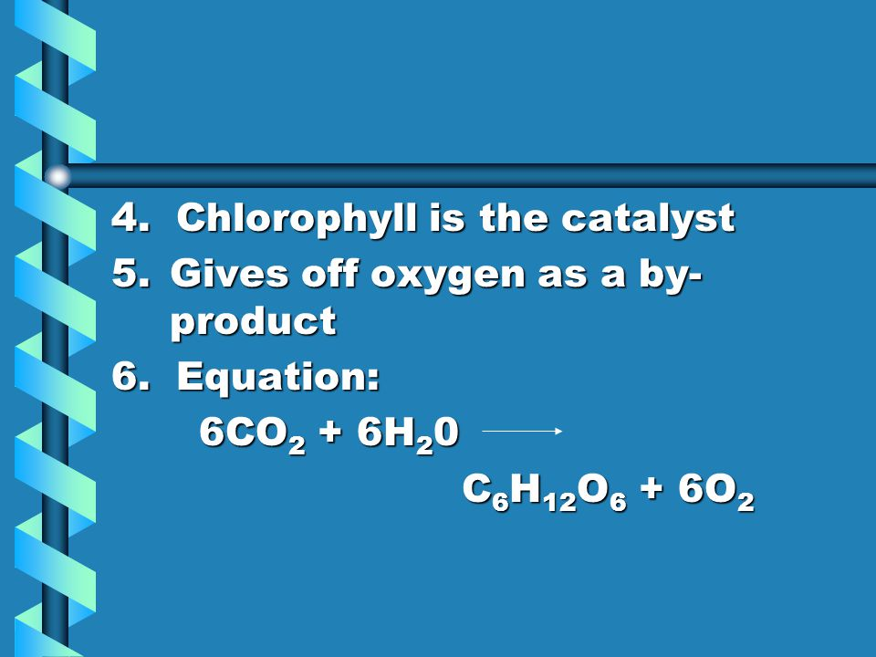 4. Chlorophyll is the catalyst