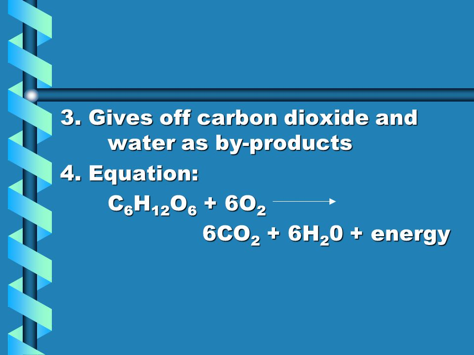 3. Gives off carbon dioxide and water as by-products