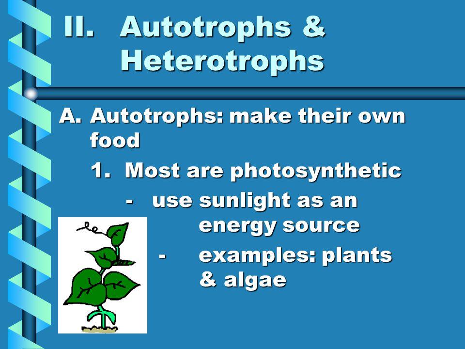 Autotrophs & Heterotrophs