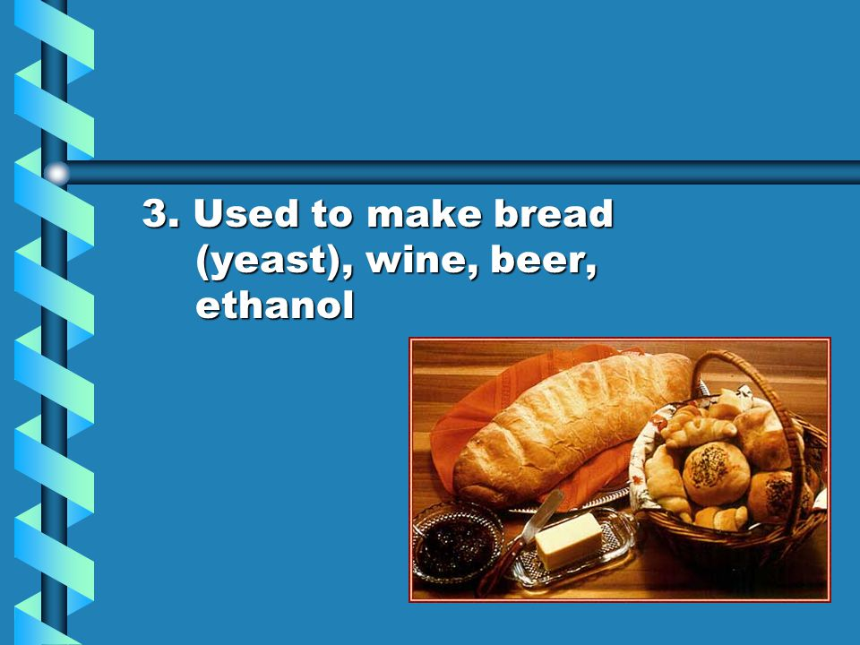 3. Used to make bread (yeast), wine, beer, ethanol