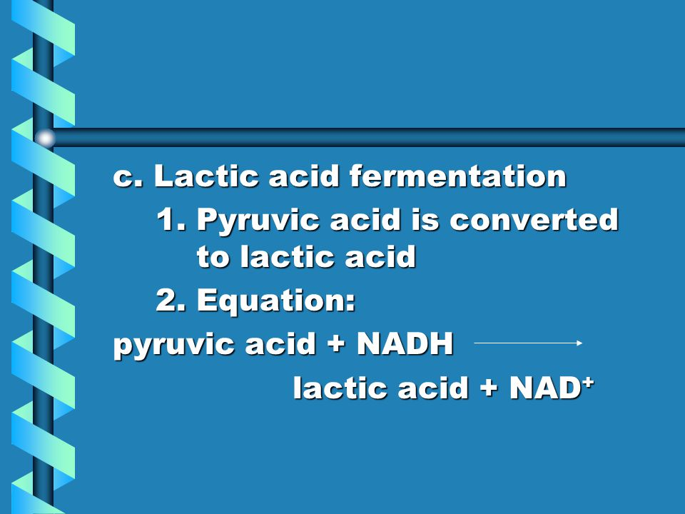 c. Lactic acid fermentation