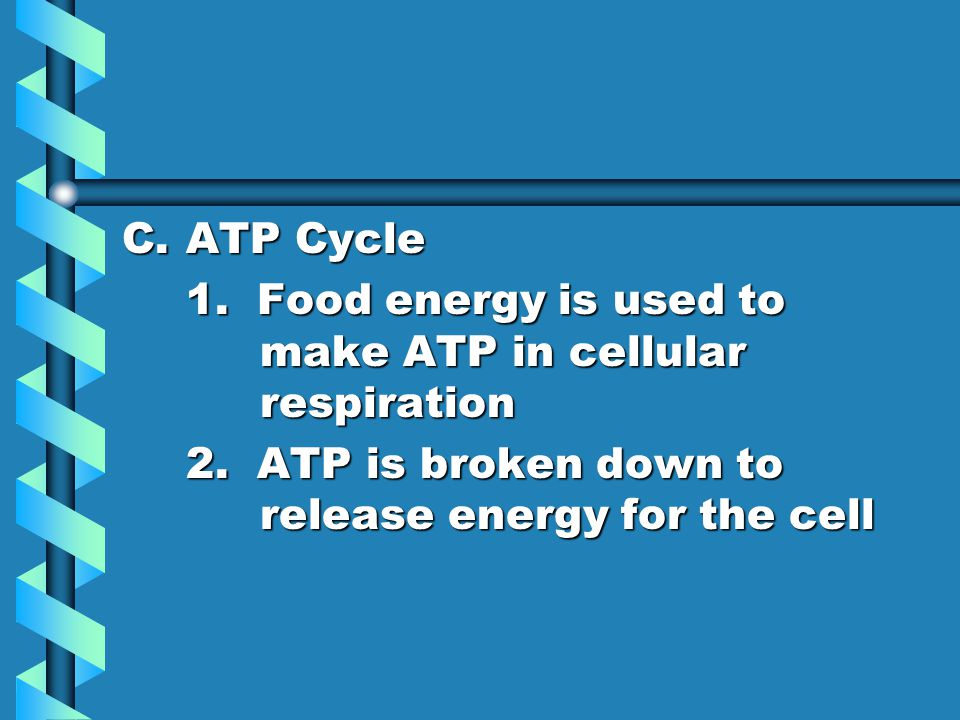 ATP Cycle 1. Food energy is used to make ATP in cellular respiration.