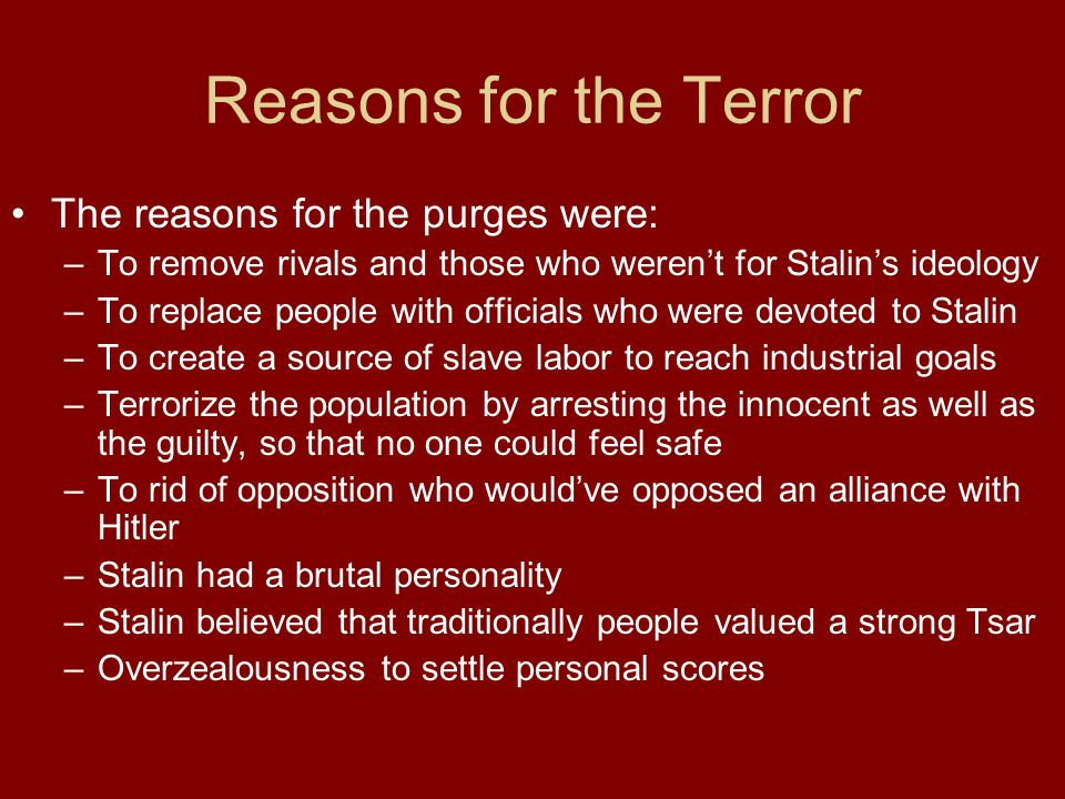 Reasons for the Terror The reasons for the purges were: